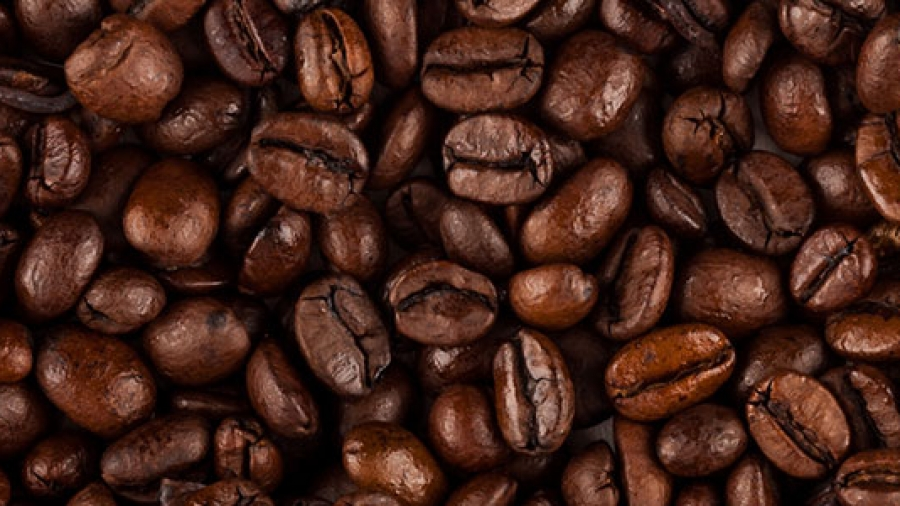 coffee-beans-chicchi